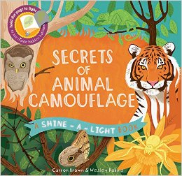 A Shine a Light Book: Secrets of Animal Camouflage