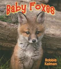 Baby Foxes: It's Fun to Learn About Baby Animals