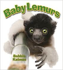 Baby Lemurs: It's Fun to Learn About Baby Animals